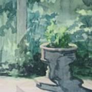 Golden Swan Garden Art Print