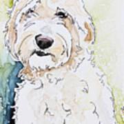 Goldendoodle Art Print