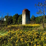 Goldenrod Surrounded Silo Art Print