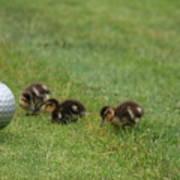 Golf Anyone Art Print