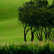 Golf Course Abstract Art Print
