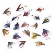 Gone Fishing Art Print by Meirion Matthias