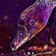 Goose Bird Feather Water Bird  Art Print