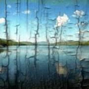 Goose Pond Reflection Art Print