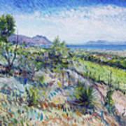 Gordons Bay Western Cape South Africa Art Print