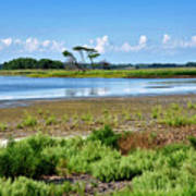 Gordons Pond At Cape Henlopen State Park - Delaware Art Print