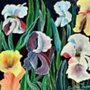 Gorgeos Iris Art Print