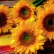 Gorgeous Lovely Sunflowers Art Print