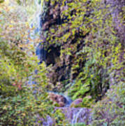 Gorman Falls At Colorado State Park IIi - San Saba Texas Hill Country Art Print