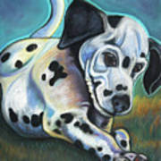 Gotballs4pets? Dalmatian Art Print