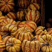 Gourds Art Print
