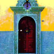 Graceful Door By Darian Day Art Print