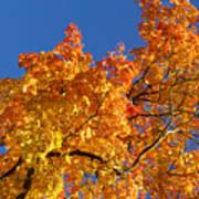 Gradient Autumn Tree Art Print