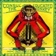 Graduation Monkey Art Print