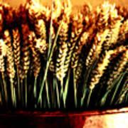 Grain In Copper Pot Art Print