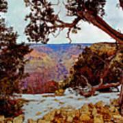 Grand Canyon National Park - Winter On South Rim Art Print