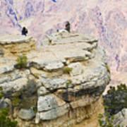 Grand Canyon Photo Op Art Print