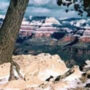 Grand Canyon Winter Art Print