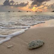 Grand Cayman Beach Coral At Sunset Art Print