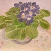 Grandma's Violets Art Print