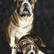 Grandson Of Sampson 2 Art Print