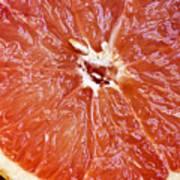 Grapefruit Half Art Print