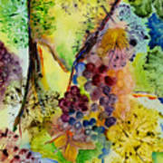 Grapes And Leaves IIi Art Print