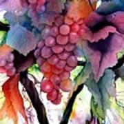 Grapes IIi Art Print