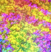 Graphic Rainbow Colorful Garden Art Print