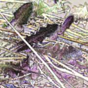Grass #3 Art Print