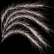 Grass Curve Coppertone Art Print
