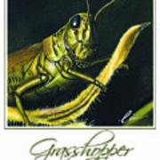 Grasshopper Poster Art Print