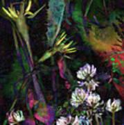 Grasslands Series No. 7 Art Print