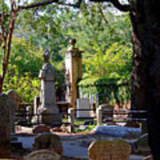 Graveyard In Charleston Art Print