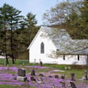 Graveyard Phlox Country Church Art Print
