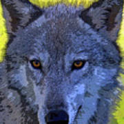 Gray Wolf Portrait Art Print