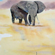 Great African Elephant  Art Print