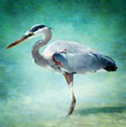 Great Blue Heron Art Print by Ellen Heaverlo