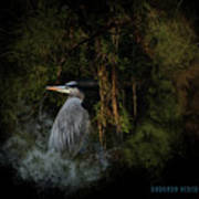 Great Blue Heron On The River Art Print