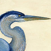 Great Blue Heron Portrait Art Print