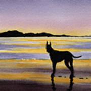 Great Dane At Sunset Art Print