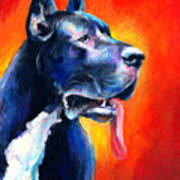 Great Dane Dog Portrait Art Print
