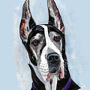 Great Dane Art Print