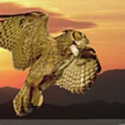 Great Horned Owl At Sunrise Art Print