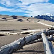 Great Sand Dunes National Park Driftwood Landscape Art Print