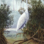 Great White Heron Art Print by Kevin Brant