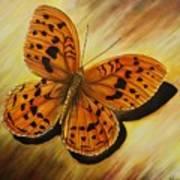 Greek Butterfly Art Print