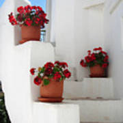Greek Steps  Art Print