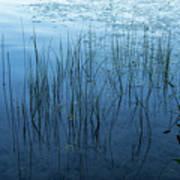Green And Blue Serenity - Smooth Wetland Morning Art Print