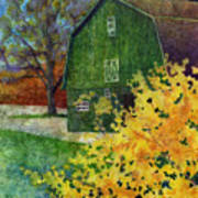 Green Barn Art Print